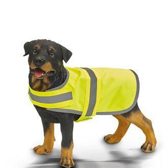 este pour chien visibilité avec bordure