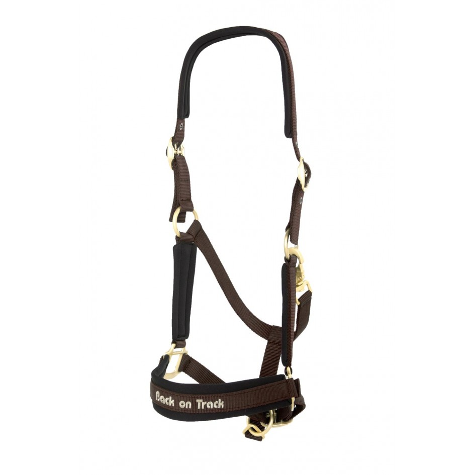 2064 werano halter brown studio 4