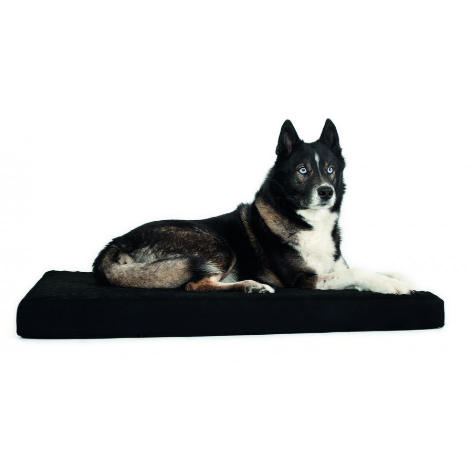 3030priority dog mattress 2