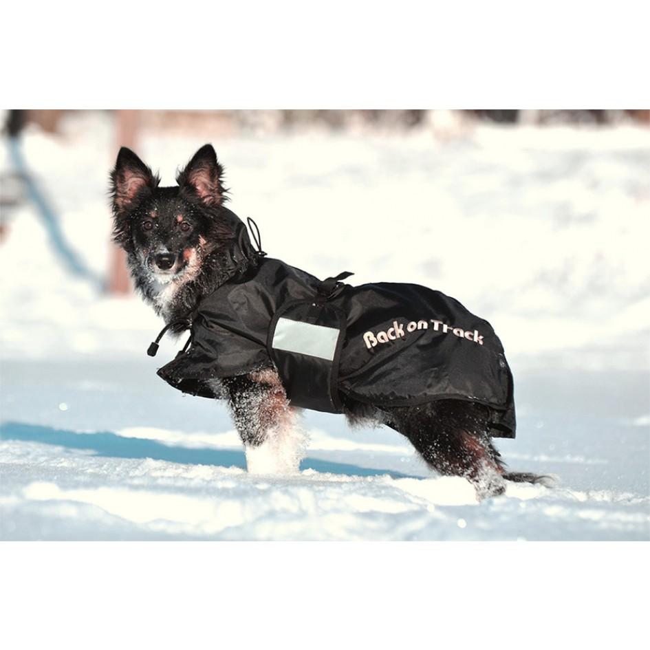 3220 standaardeken hond winter 2