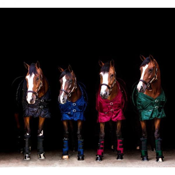 4 bay mares 15
