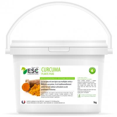 Curcuma – Articulations et digestion cheval – Plante pure