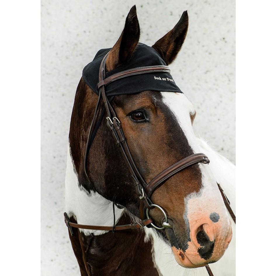 2043 horse neck cap iii 7