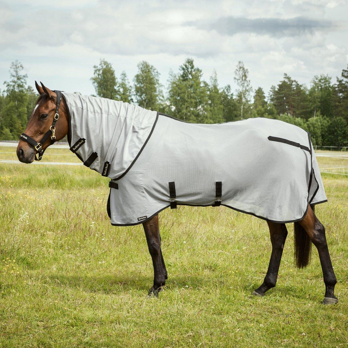 2104 buzter fly rug 02 1200x