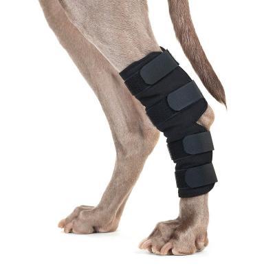 Protections pour pattes arrières