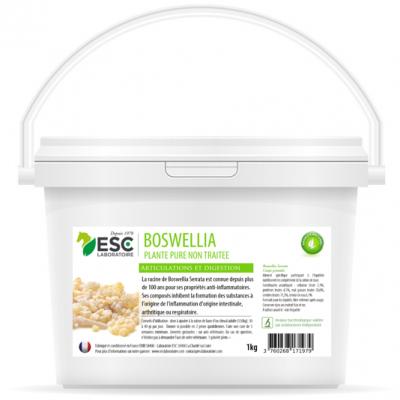 Boswellia Serrata – Plante pure – Inflammations articulaires et pulmonaires cheval