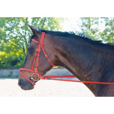 Bridon Biotack® ROUGE COB + renes