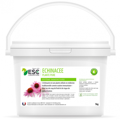 Echinacee – Défenses immunitaires cheval – Plante pure
